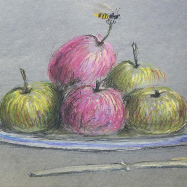 Пять яблок и одна оса. Бум., пастель. 33х50. 2015